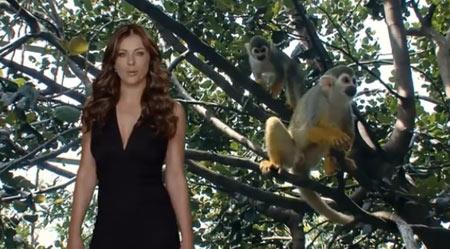 Liz Hurley Groupon Ad