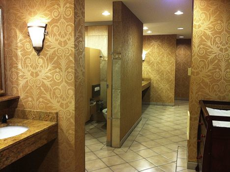 Fancy US toilets