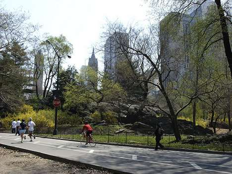 Central Park – New York City