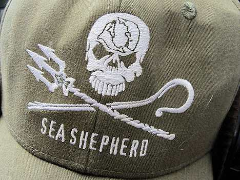 Sea Shepherd cap