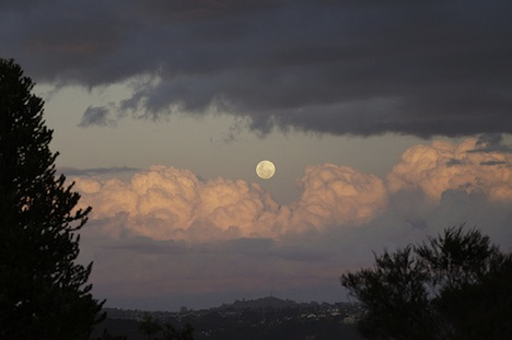 Clouds and moon over Auckland – New Zealand