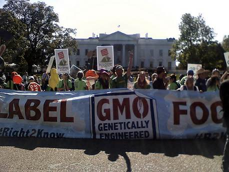 A GMO food rally in Washington in 2011