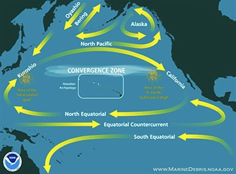 Great Pacific Garbage Patch – North Pacific
