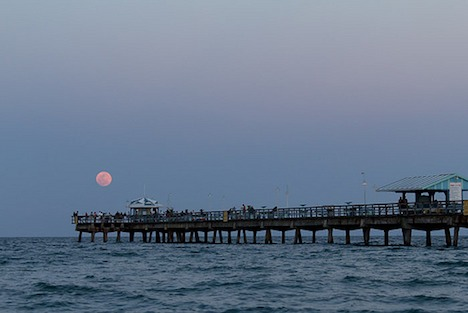 Supermoon - Fort Lauderdale, Florida