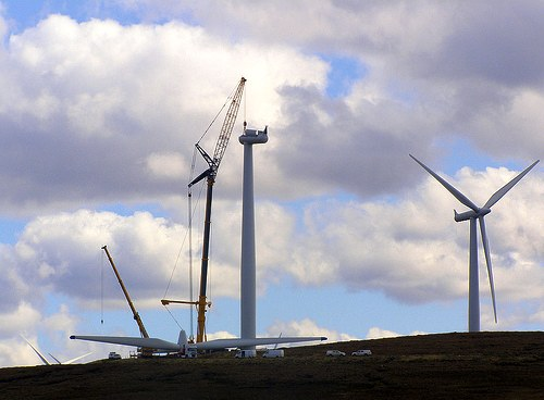 Wind farm development