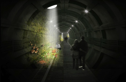 London mushroom tunnel