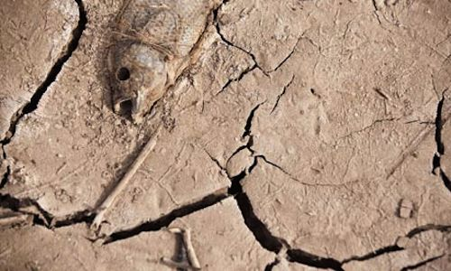 Drought in Spain's Canary island of Gran Canaria