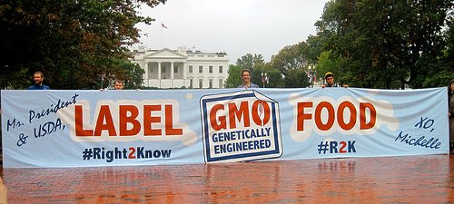 GMO labeling march