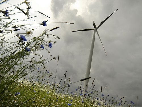 Wind turbine in Europe