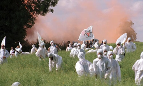 Protesters destroying GM crops
