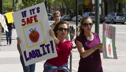 GMO labeling protesters