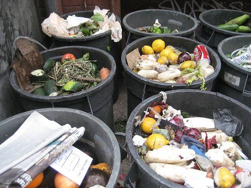 new York food waste