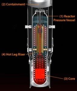 Reactor module